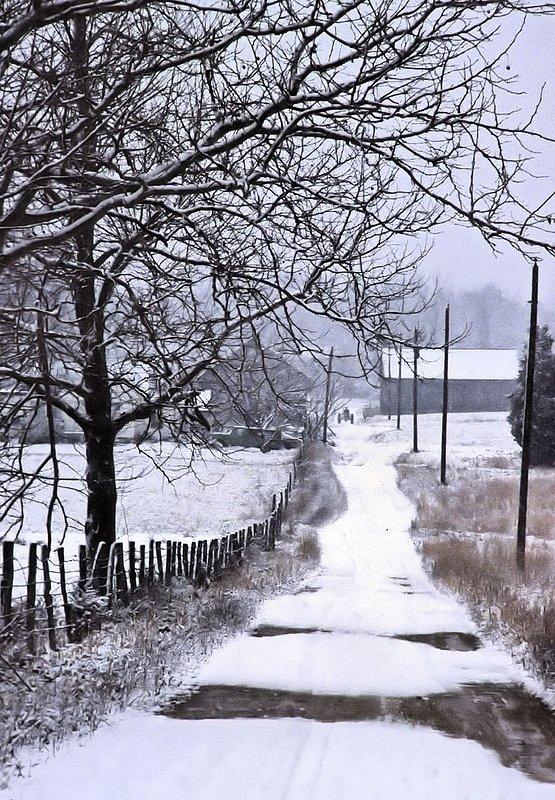 Wnter Farm.jpg