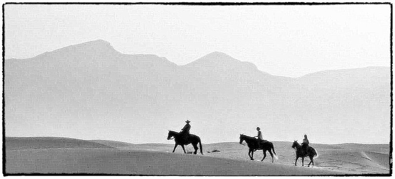 Night Riders.jpg ::  As evening approaches a number of Equestrians appear for their sunset ride.