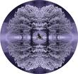 E110509-Kaleidoscope.jpg