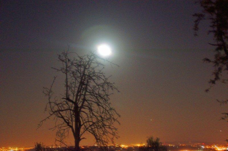 Griffith Moonlight.jpg :: SONY DSC