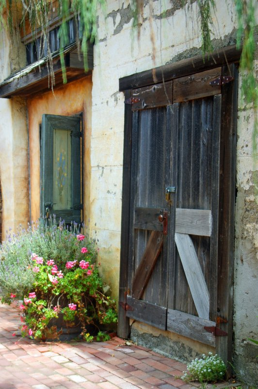 Harmony Barn Door.jpg :: SONY DSC