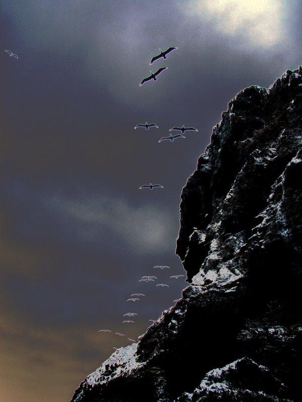 Leading the Way.jpg :: OLYMPUS DIGITAL CAMERA