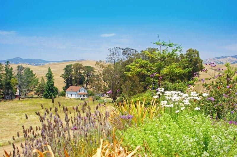 Valley Home.jpg :: SONY DSC