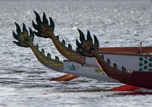 IMG_4517 Dragons Tails.jpg
