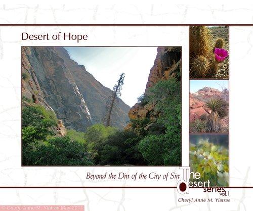 The Desert of Hope Coverv4.jpg