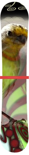 birdseye snowboard design by Cherylanne M. Yiatras watermark copyright 2011.jpg