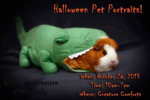 Halloween Pet Portraits- Creature Comforts 2013 :: Kristys