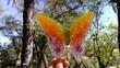 Yellow orange pink Mana Butterfly.jpg