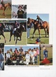 POLO Players Edition May 2010 (p25).jpg
