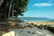 Sandy Beach.jpg