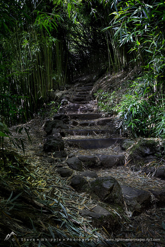 Stairs to Tranquility-d0aab.jpg
