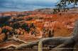 Bryce Canyon.jpg
