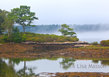 Sheepscot-River-Maine-1485.jpg
