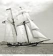 ts 1924 Pride Sail .jpg