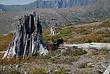 Mt St Helens Area 030 Taken 7-26-07.jpg
