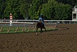 Saratoga Race Track 002 Taken 8-12-07.jpg