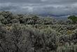 Storm Over Malad Gorge State Park 026 Taken 6-21-09.jpg