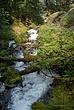 Wahkeena Falls 005 Taken 8-07-08.jpg
