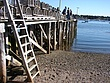 Bass Harbor - 20.jpg