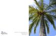 Hawaii Palm Tree(1).jpg