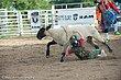 Rodeo-8305.jpg