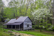 cabin and dogwood 0416_M3C1563_4_5_6_7 m.jpg