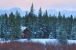 cabin in the woods 0114_M3C6819 m.jpg