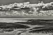 cape cod seashore BW 1016_DSF0671 m.jpg