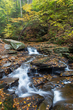 cascade ricketts glen 1015_73A0130 m.jpg