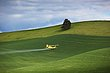 crop dusting palouse 0610_MG_5881 m.jpg