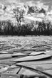 ice layers BW 0114_M3C3749 m.jpg