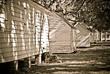 Slave Cabins 2.jpg