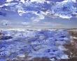 Summer-mixed media  Oil on Photo (canvas).jpg