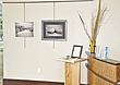 exhibition-3.jpg