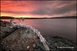 LS_01_Michipicoten_Sunrise.jpg