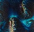 Blue Wave_Square or Rectangular-48892.jpg