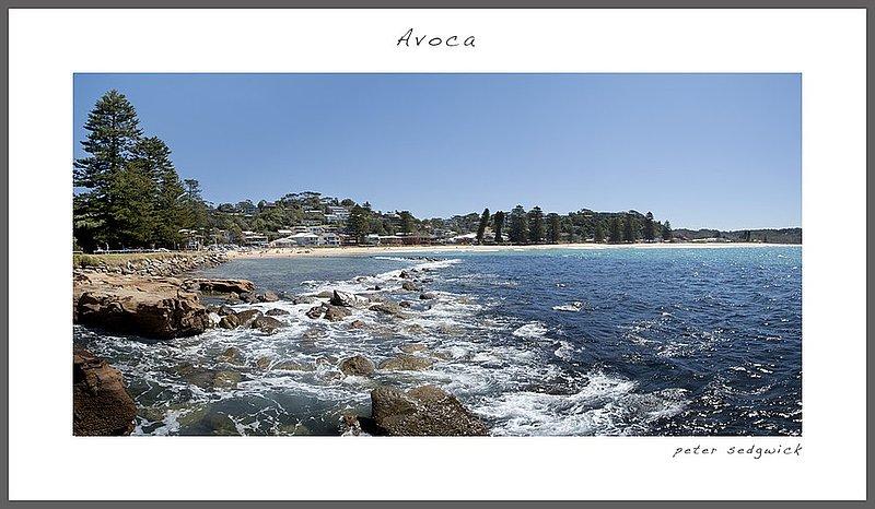 Avoca 4 web.jpg :: Avoca beach 4
