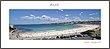 Bondi web display.jpg