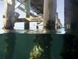 Busselton underwater observatory.jpg