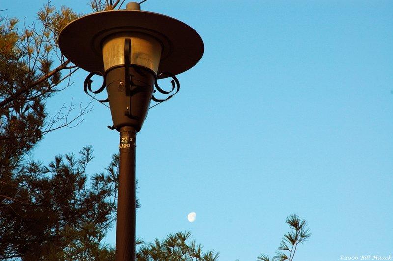 35_DSC_0891 streetlight and moon day 011806.jpg