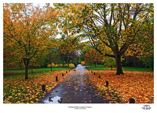 Autumn-Parkland-Path.jpg