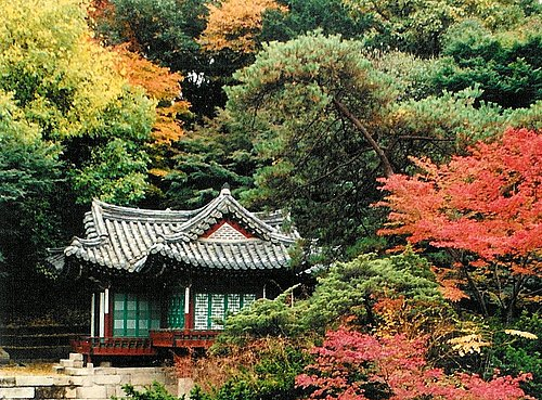 Images of Seoul 16.jpg