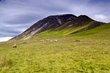 Cumbria-w_3188.jpg