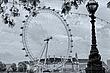 London 1-6-10 ed (2).jpg