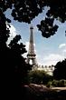 Paris edited (4).jpg