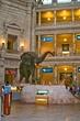 American Museum of Natural History  _D3C4359_1.jpg