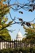 Capitol Dome  _D3C3887_1.jpg