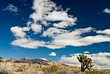 Cloud Vista 2 DSC_2419sharp2p.jpg