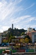 Coit Tower  _D3C5173_1.jpg