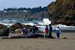 Houda Beach Grey Whale  _D3C1009_1.jpg